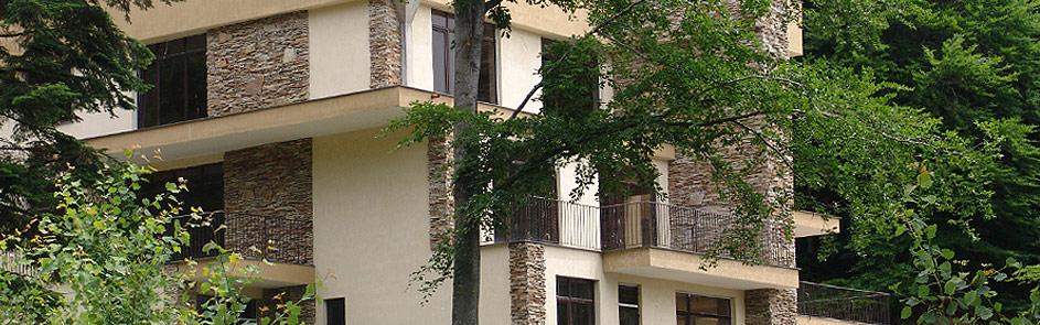ивайловградски гнайс 2